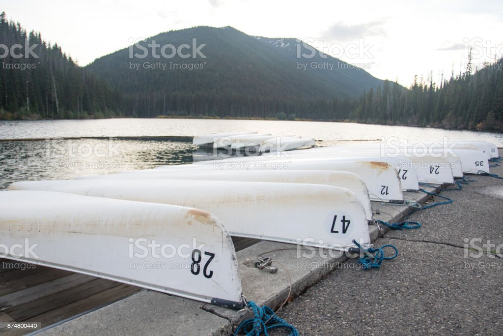 White canoe in row moored on a lake. stock photo