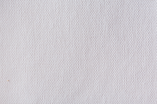istock White canvas texture close-up 884981104