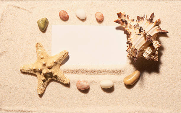 White card in frame of starfish, seashell, stones on sand foto