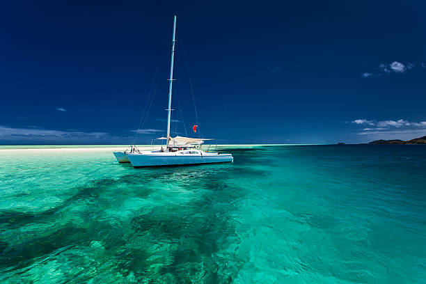 white catamaran in shallow tropical water with snorkeling reef - katamaran bildbanksfoton och bilder