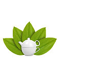 white ceramic kettle or teapot with cup on the background of green leaves. Isolated on white. concept of natural origin. Copy space