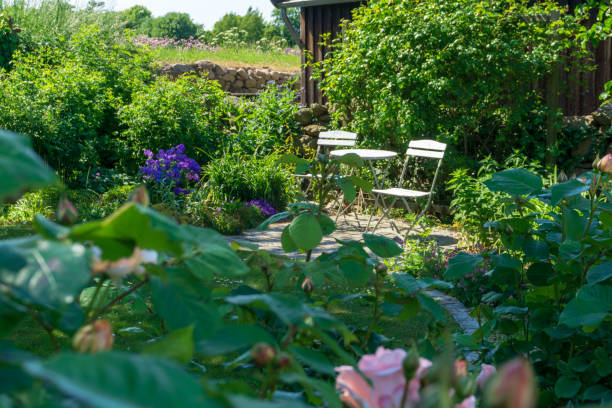 White chairs and table in a garden, Bornholm island, Denmark stock photo