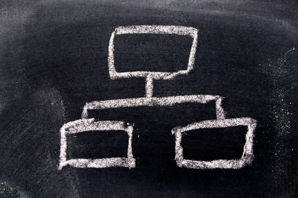 White chalk drawing in business organization chart on black board background stock photo