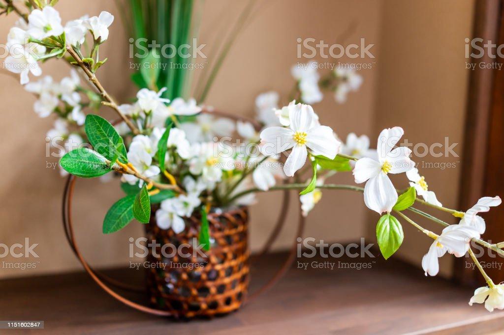 Photo Libre De Droit De Fleurs De Cerisier Blanc Fleur