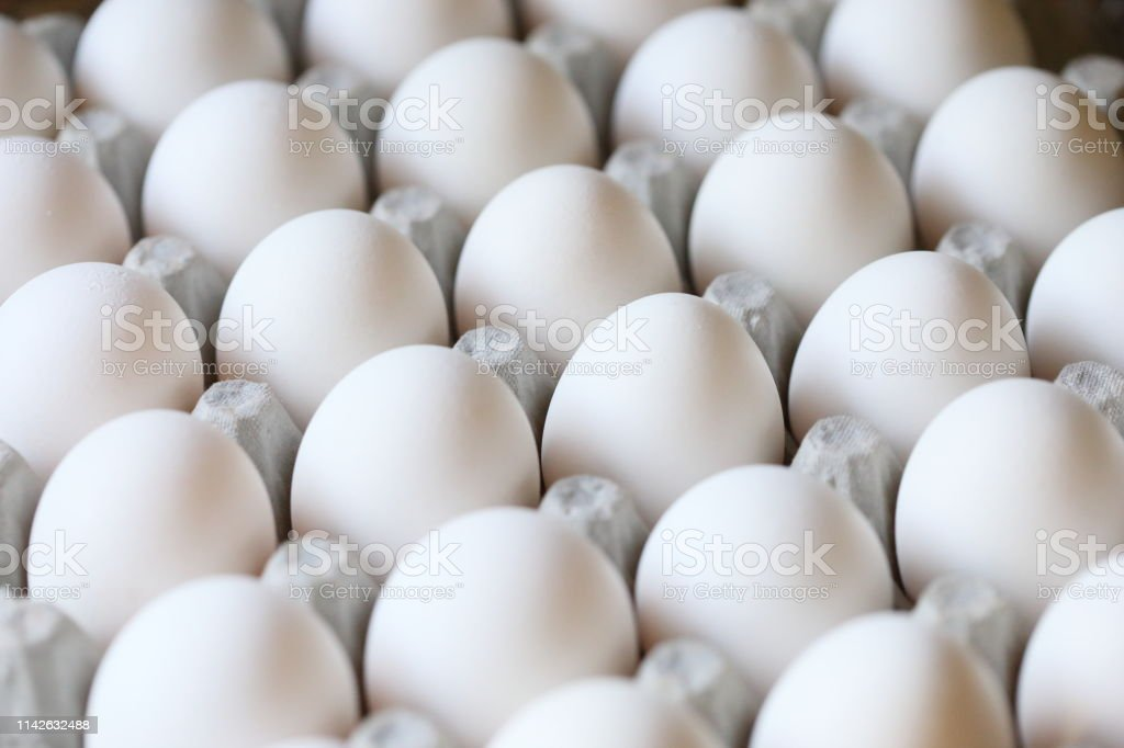 white chicken eggs in a carton, close up stock photo