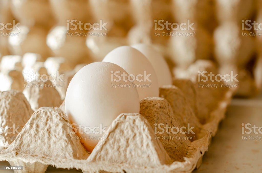 White chicken eggs in carton box, close up