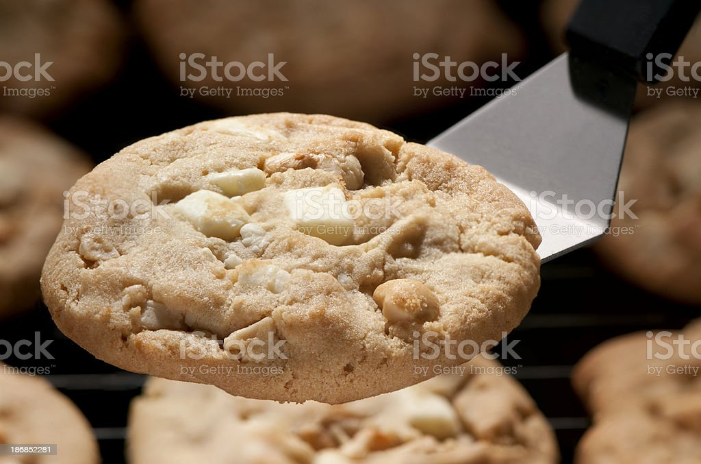 White chocolate chunk cookie-close up stock photo