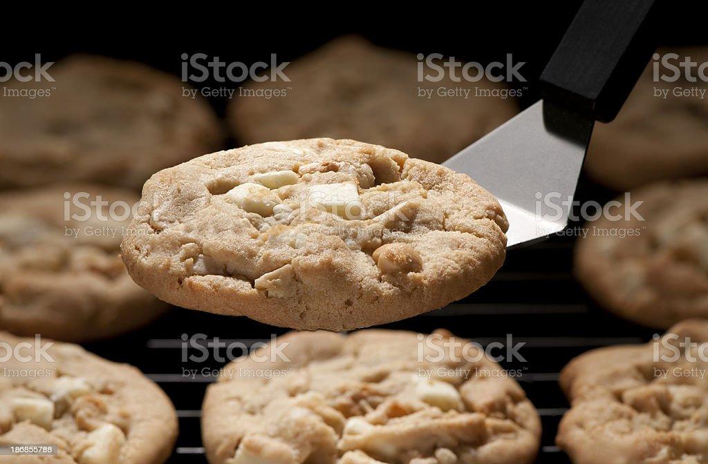 White chocolate chunk cookies stock photo