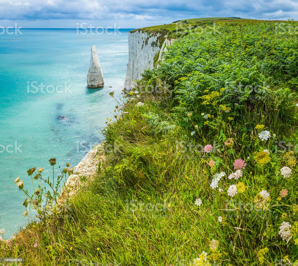 White cliffs sea stacks blue ocean Jurassic Coast Dorset UK stock photo