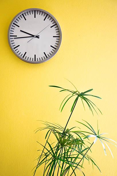 reloj de pared blanco a amarillo - wall clock fotografías e imágenes de stock