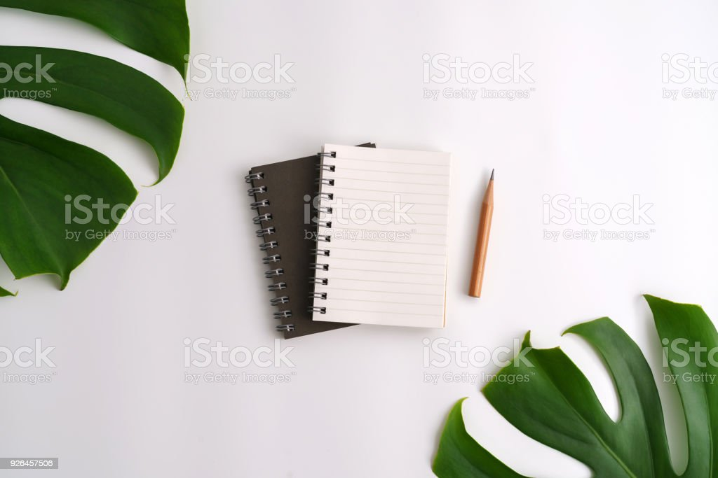 White cosmetic products and green leaves on white background. Natural...