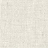 istock White cotton fabric texture background 1219893350