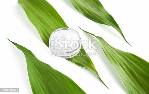 927626522 istock photo White cream bottle placed, Blank label package for mock up on a green foliage background. The concept of natural beauty products. 836213478
