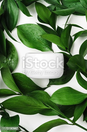 White cream in open jar top view with decorative green foliage. Organic cosmetics skincare product with natural ingredients on white background with plant twigs. Eco-friendly beauty industry concept.
