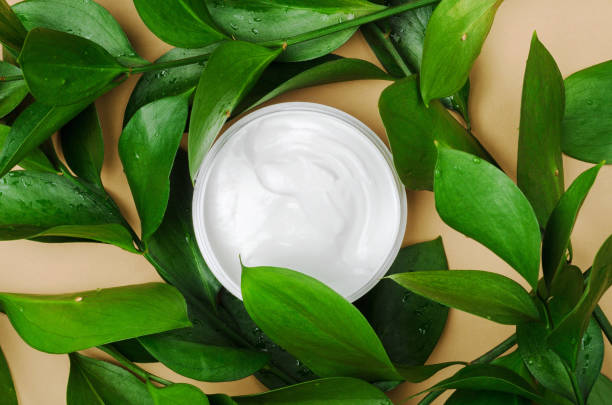 White cream in open jar top view with decorative green leaves. Cosmetology skincare product in bottle on beige background with plant twigs. Organic cosmetics with natural ingredients concept stock photo