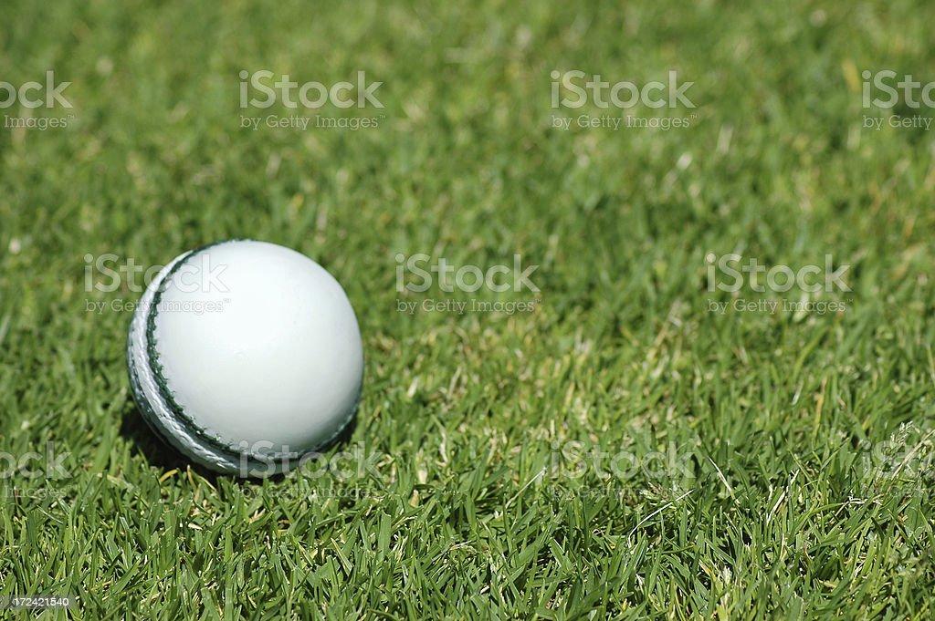 White Cricket Ball on grass royalty-free stock photo
