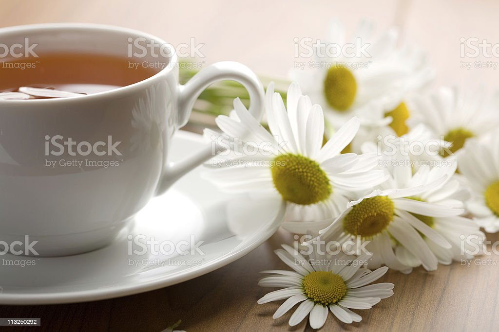 white cup of herbal tea and camomile flowers royalty-free stock photo