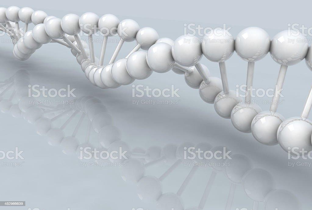 white DNA model royalty-free stock photo