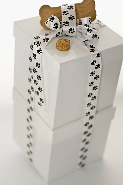 White Dog Gift Dog gift... in white reflective boxes with paw print ribbon toped with dog biscuit and selective focus on the little treat. dog treat present stock pictures, royalty-free photos & images