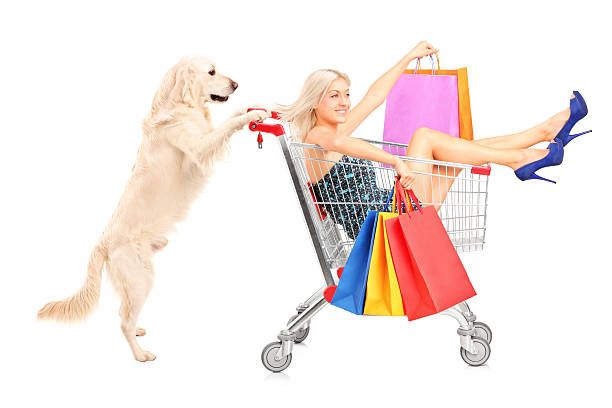 White dog pushing a woman with shopping bags in cart picture id474538357?b=1&k=6&m=474538357&s=612x612&w=0&h=2zjlh5ujkv nnyq3cpy781px6os73myaoavtkrh3ndo=