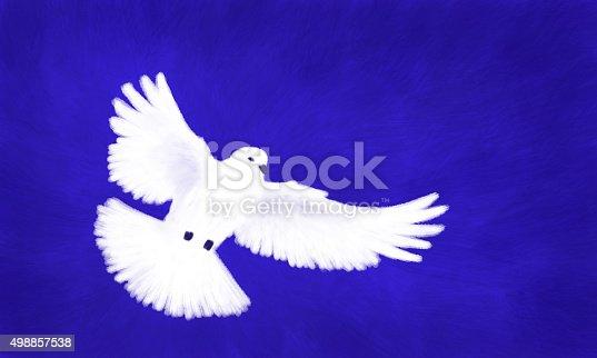 istock White Dove Flying Blue Background 498857538