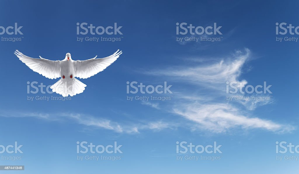 Royalty Free Symbols Of Peace Pictures Images And Stock Photos Istock