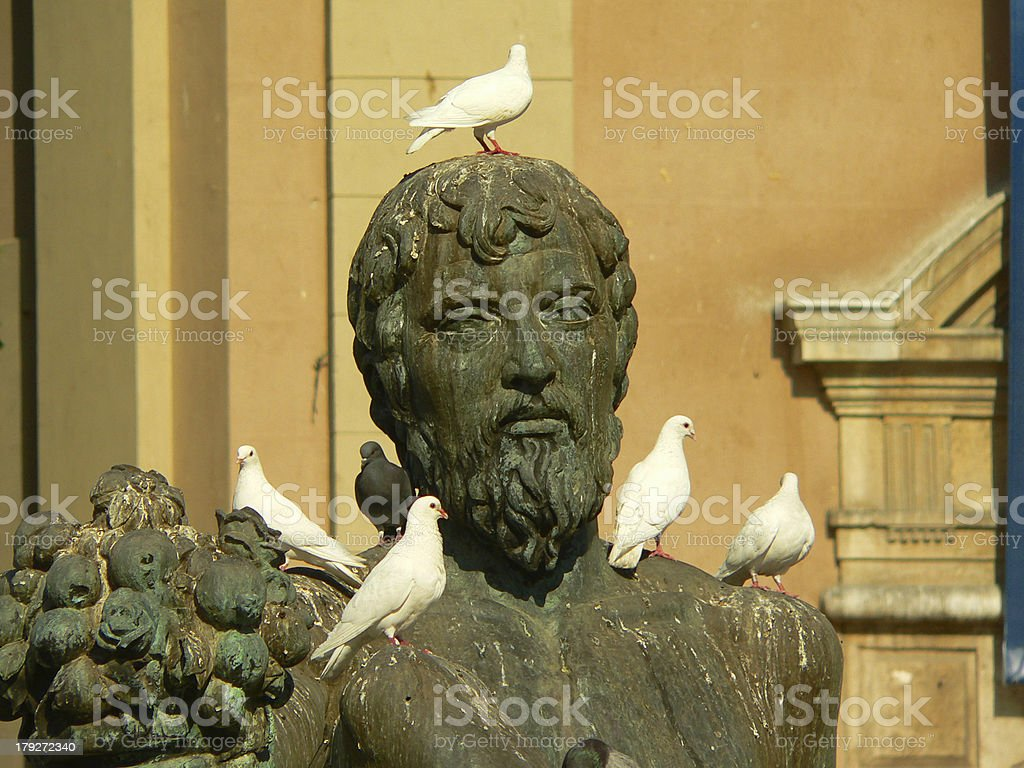 White doves and one grey dove royalty-free stock photo