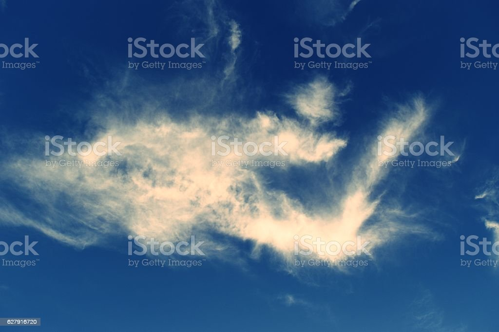 White Dragon ,Clouds and blue sky stock photo