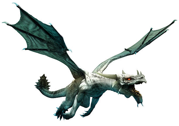 White dragon stock photo