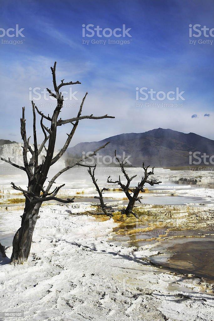 Il lago geotermica bianco asciugatura foto stock royalty-free