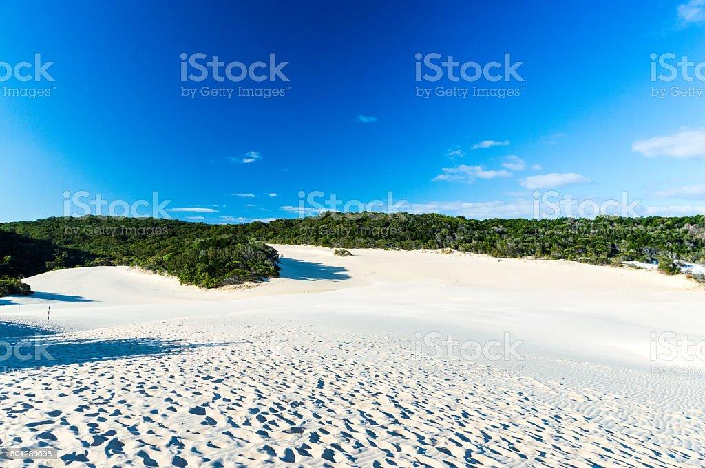 White dunes on Fraser Island stock photo