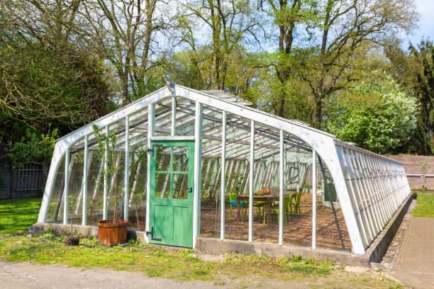 White dutch greenhouse in garden stock photo