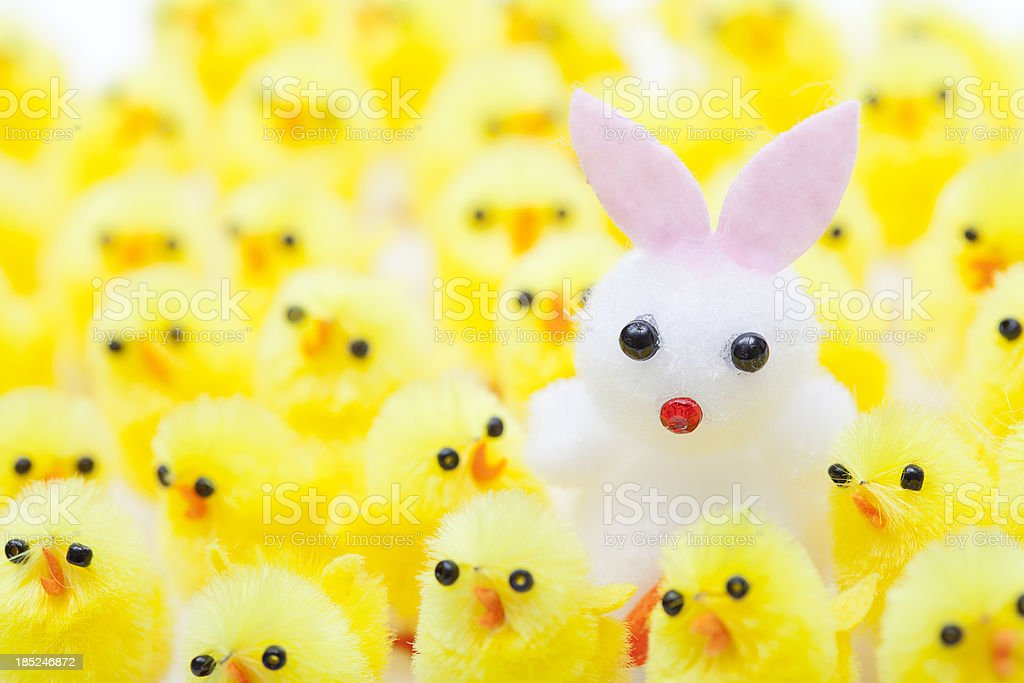 White Easter Rabbit in a Crowd of Chicks royalty-free stock photo