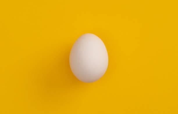 Weißes Ei – Foto