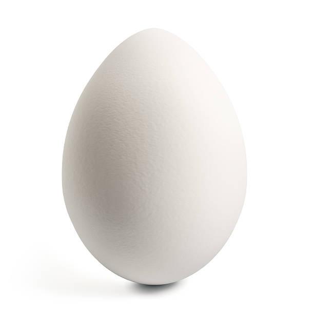 "White Egg ""White Egg, Isolated On White, 3D Render"" egg stock pictures, royalty-free photos & images"