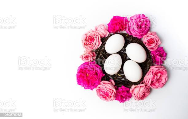 White eggs with fresh roses picture id1060876266?b=1&k=6&m=1060876266&s=612x612&h=8evmwiulplx6skwgeanxxjsy6cc9bj33udssv x1fj0=