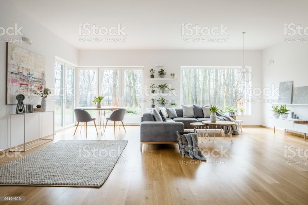 White Elegant Living Room Interior With Windows Grey Corner Sofa And Modern Art Posters Stock Photo Download Image Now Istock