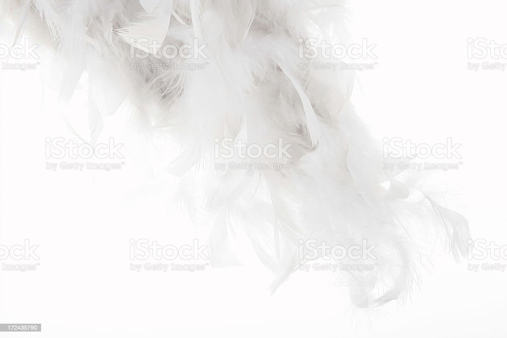 white feather background royalty-free stock photo
