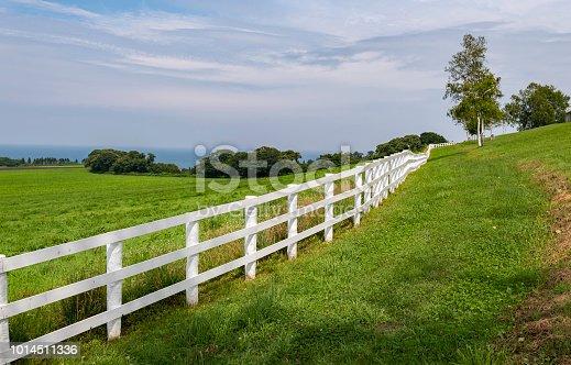 White fence along green grass field