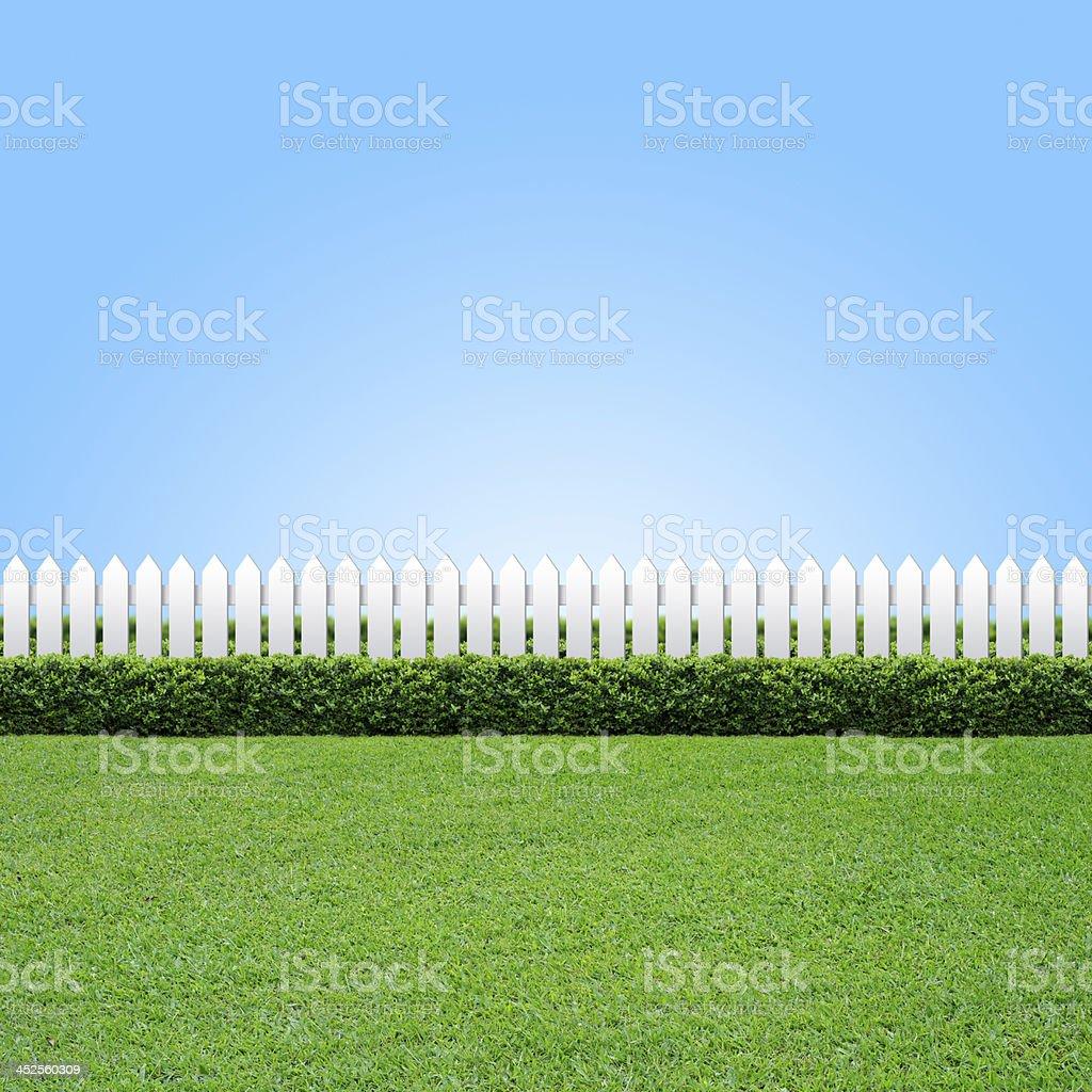 weißer zaun und grünem gras - stockfoto | istock
