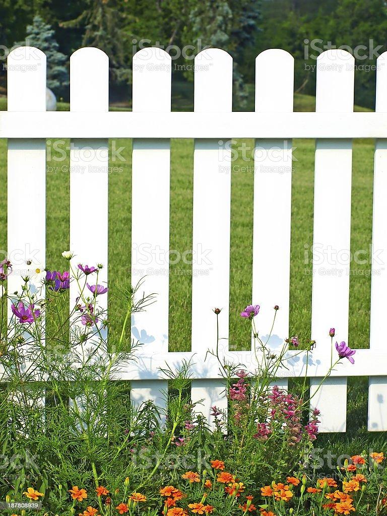 Staccionata Bianca In Legno recinzione bianca sullerba verde e fiori - fotografie stock