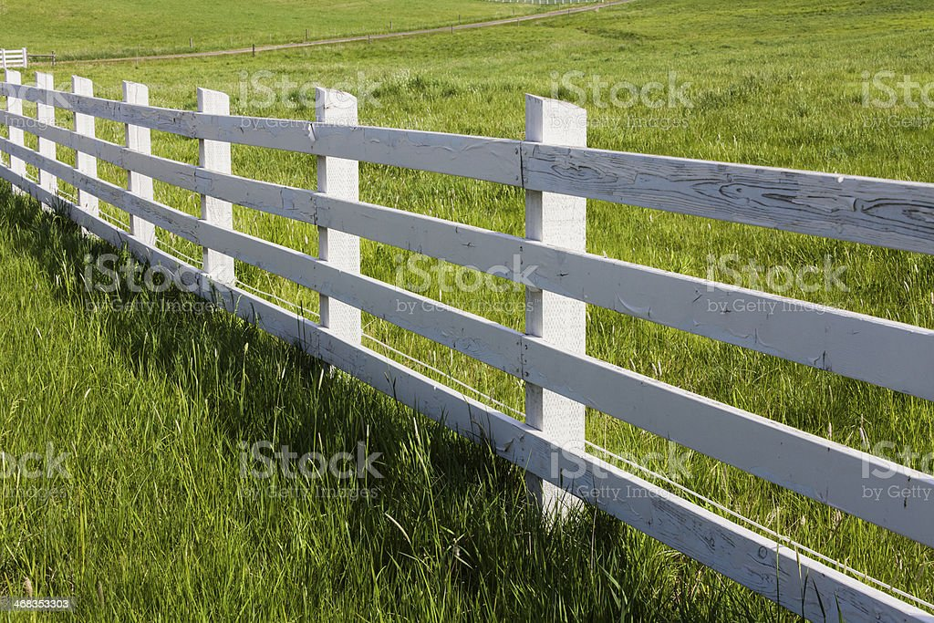 White Fence royalty-free stock photo