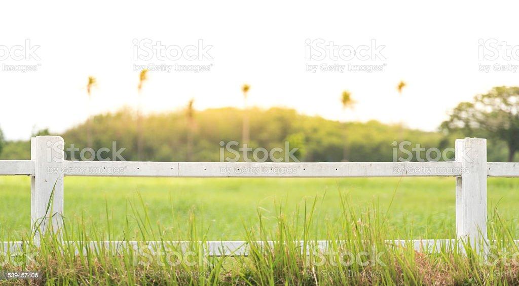 white fence with grass background stock photo