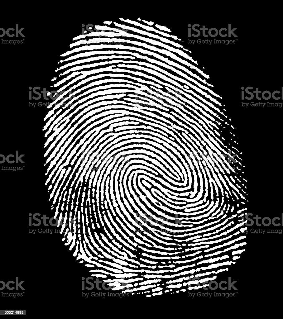 white fingerprint stock photo