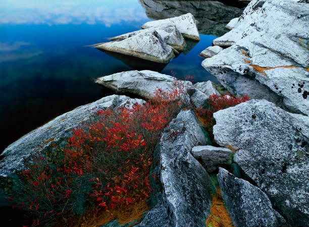 White Fish Rocks stock photo