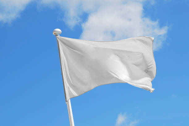 white flag - flag stock photos and pictures