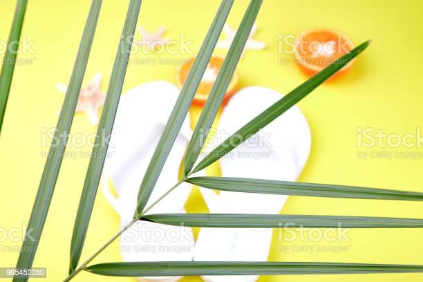 Białe Japonki Owoce Pomarańczowe Rozgwiazdy I Palmy - zdjęcia stockowe i więcej obrazów Akcesorium osobiste