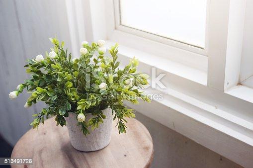 1136239089 istock photo White flower in white flowerpot on wood table. 513491726