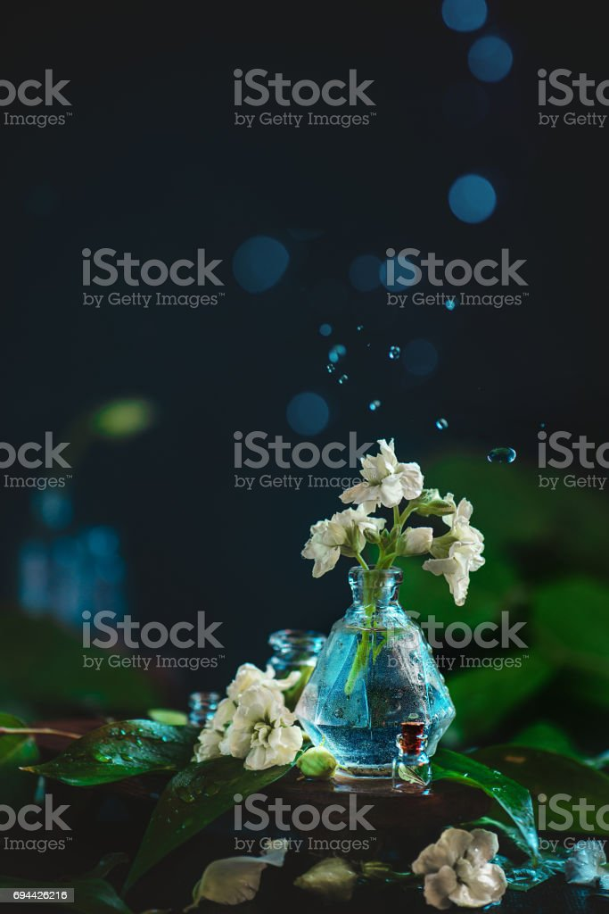 Flowers, petals and water drops in motion on a dark background with...