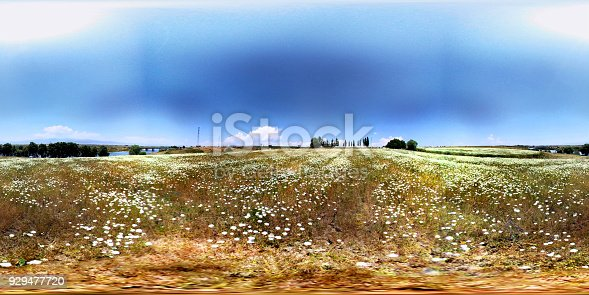 istock White flowers and river 360 degree view 929477720